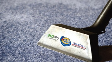 carpet cleaning success industry leaders